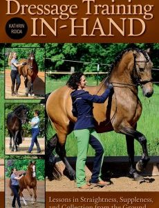 Dressage_Training_In_Hand