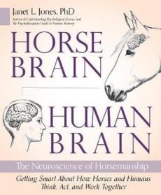 Horse-Brain-Human-Brain