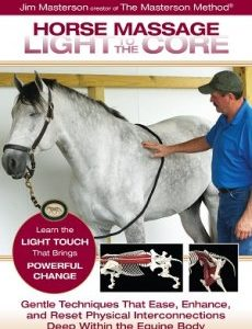 Horse Massage Light to the Core