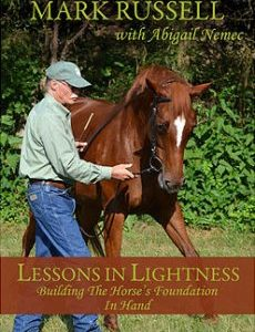 lessons_-in_-lightnessdvd