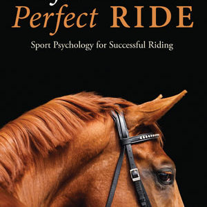 Perfect Mind perfect Ride