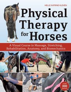Physical-Therapy-for-Horses
