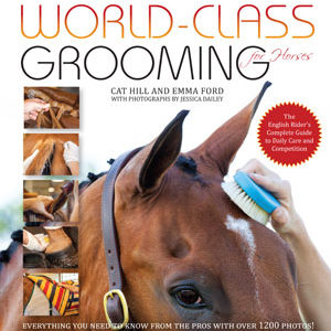World Class Grooming Horses
